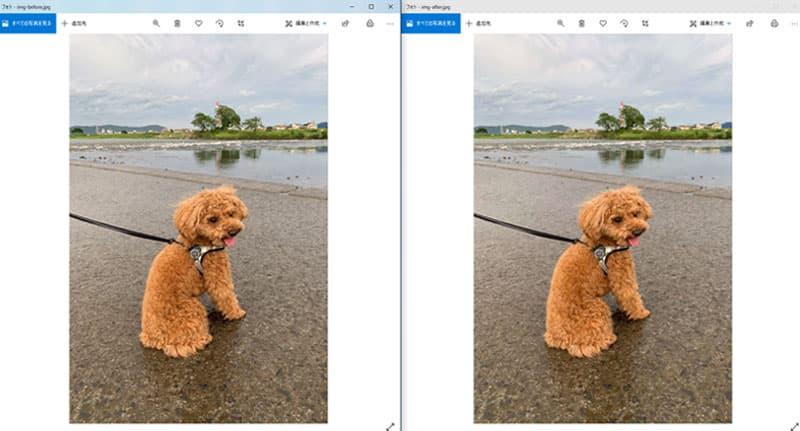 写真の画質比較